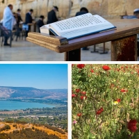 BAR MITZVAH TOUR IN ISRAEL - NORTH EXPERIENCE